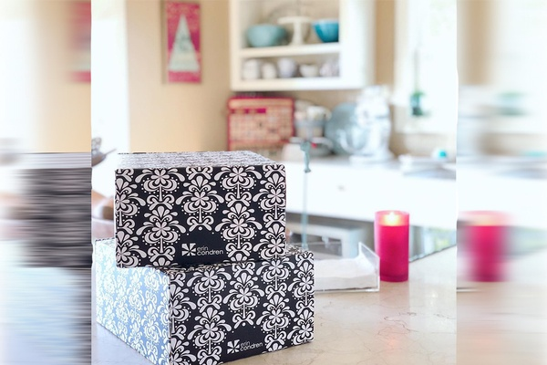 Erin Condren Surprise Box Photo 1