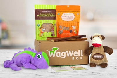 WagWell Box Photo 1