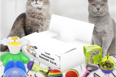PetClever Meow! Box Photo 1