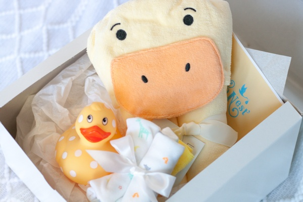9 to Nest is offers adorable baby gifts which help countdown the months of pregnancy in a fun box delivered straight to your mailbox each month.