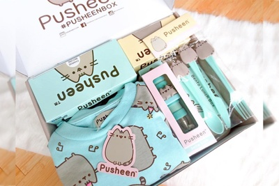 Pusheen Box Photo 2
