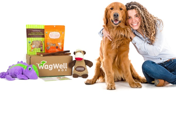 wagwell box best pet subscription box