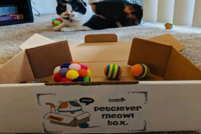 PetClever Meow! Box Photo 2