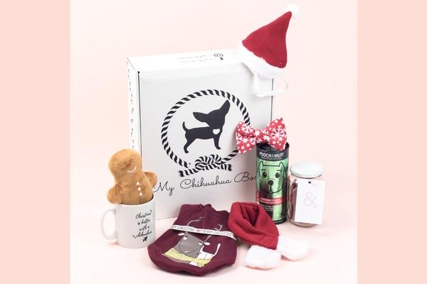 My Chihuahua Box