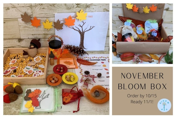 Bloom Box | Montessori and Waldorf Inspired Box Photo 1