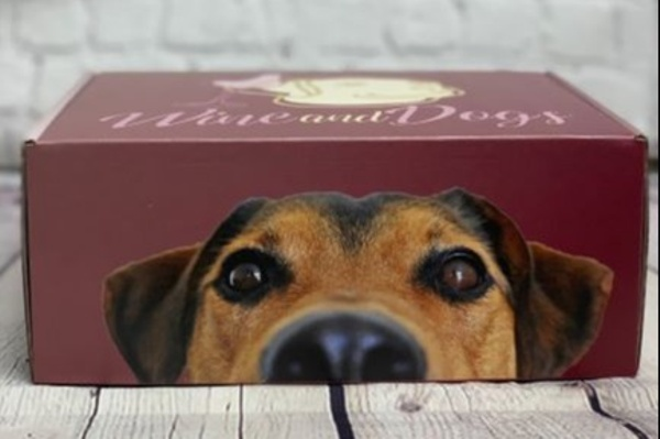 WineandDogs Photo 1