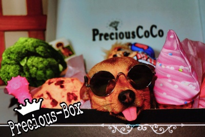 PreciousCoCo Photo 2