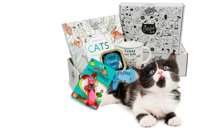 Cattitude Box - Monthly Subscription Box for Cat Ladies Photo 1